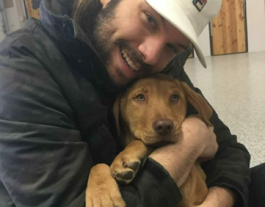 cane abbraccio proprietario adozione