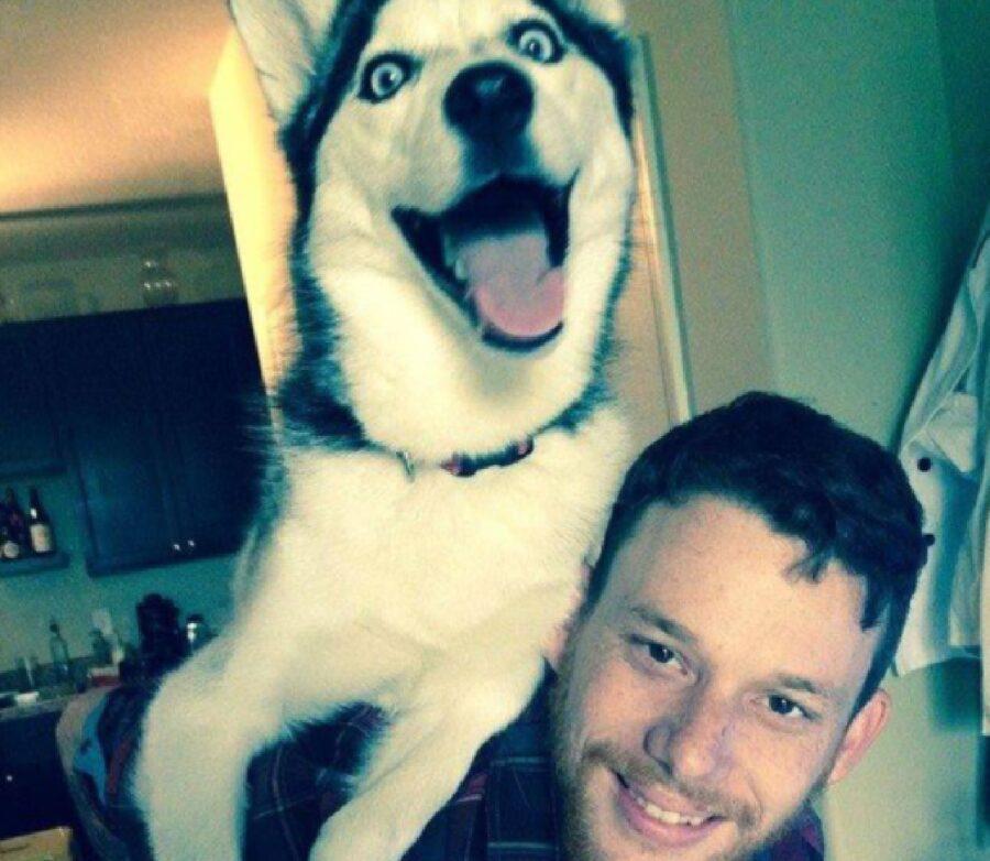 cane felice giocare con papà