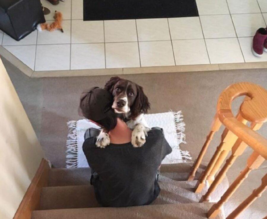 cane scale abbraccio papà