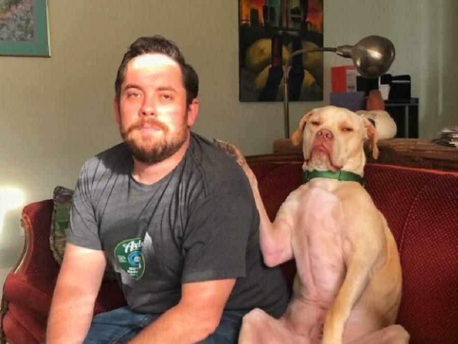 cane conforta proprietario