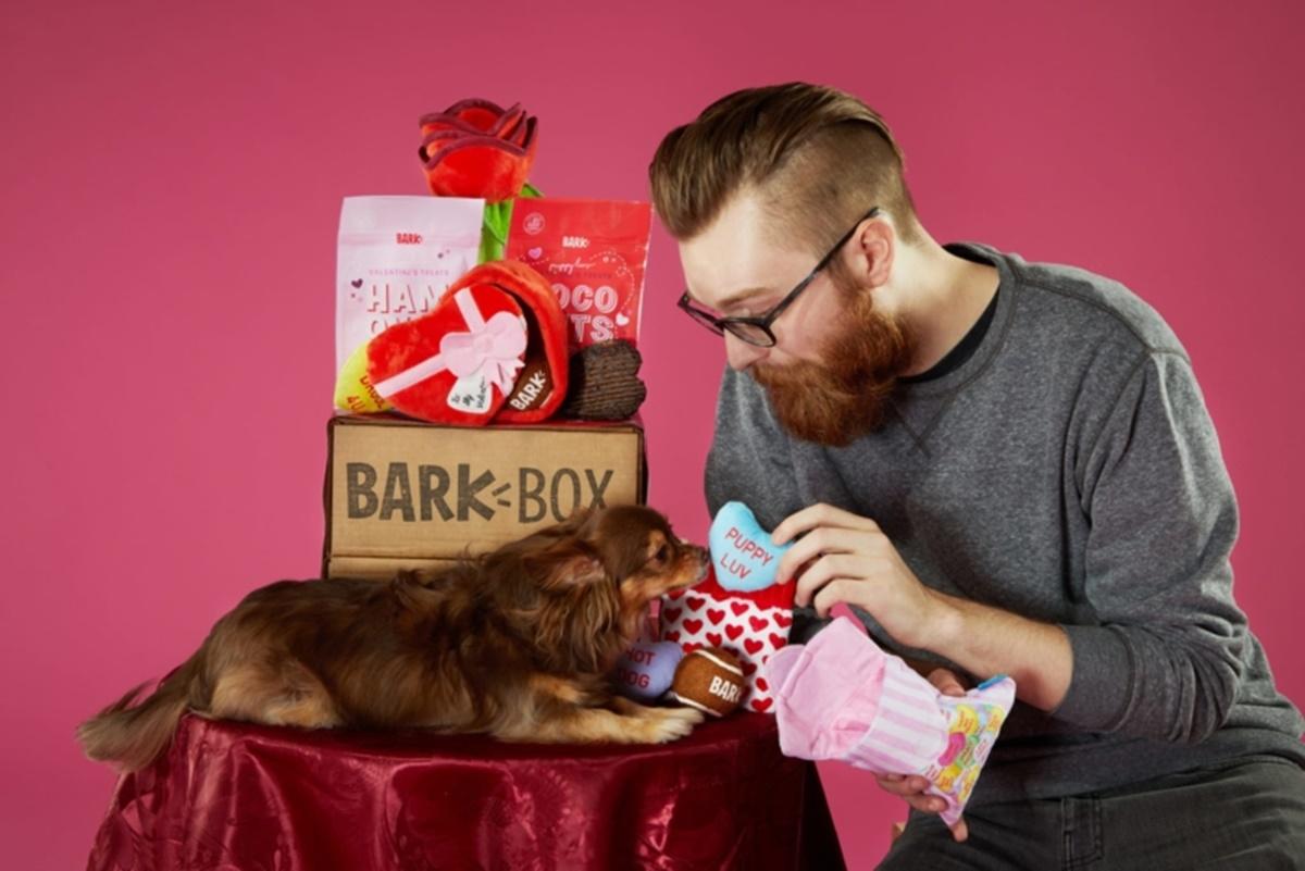 cane con box