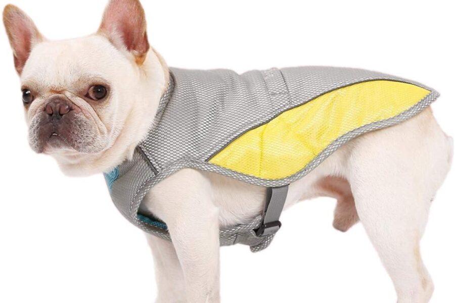 cappottino rinfrescante per cane