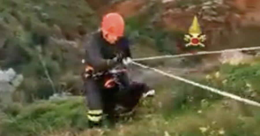 pompiere salva un cane caduto in un burrone
