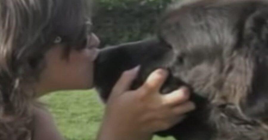 una ragazza bacia un cane