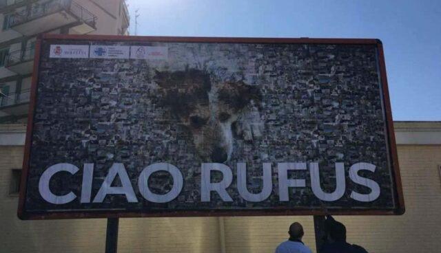 Manifesto per il cane Rufus