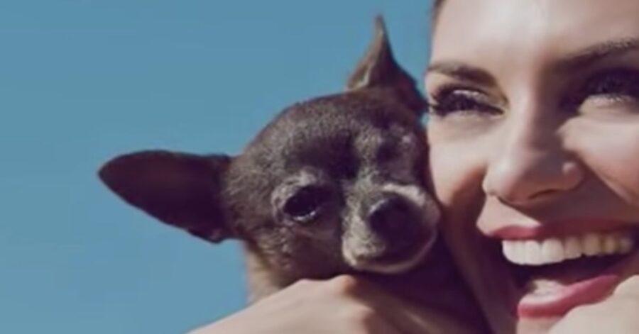Julie e il suo vecchio Chihuahua