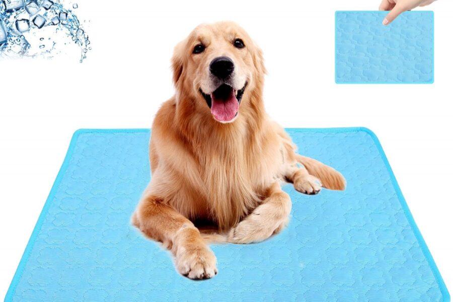 cane su tappetino che raffredda