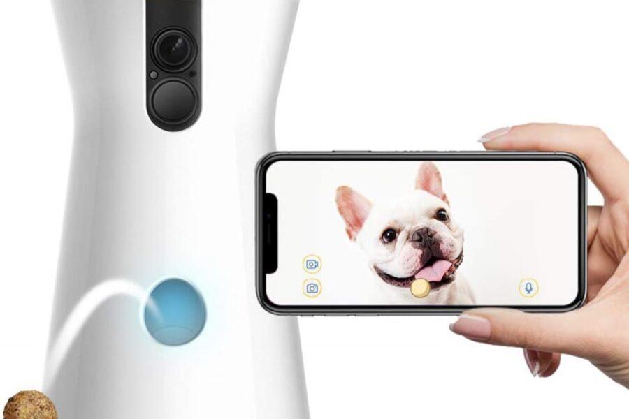 videocamera per il cane