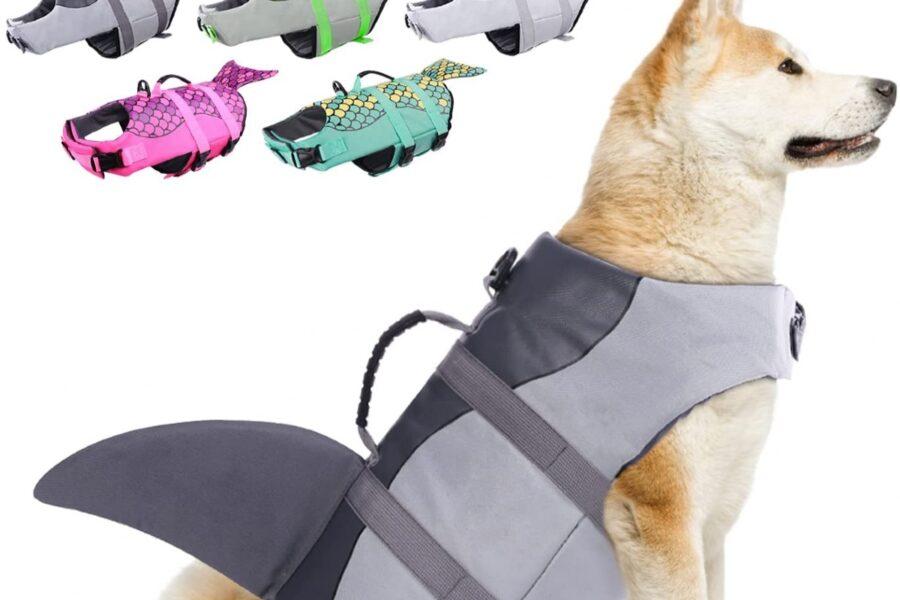 squalo salvagente per cani