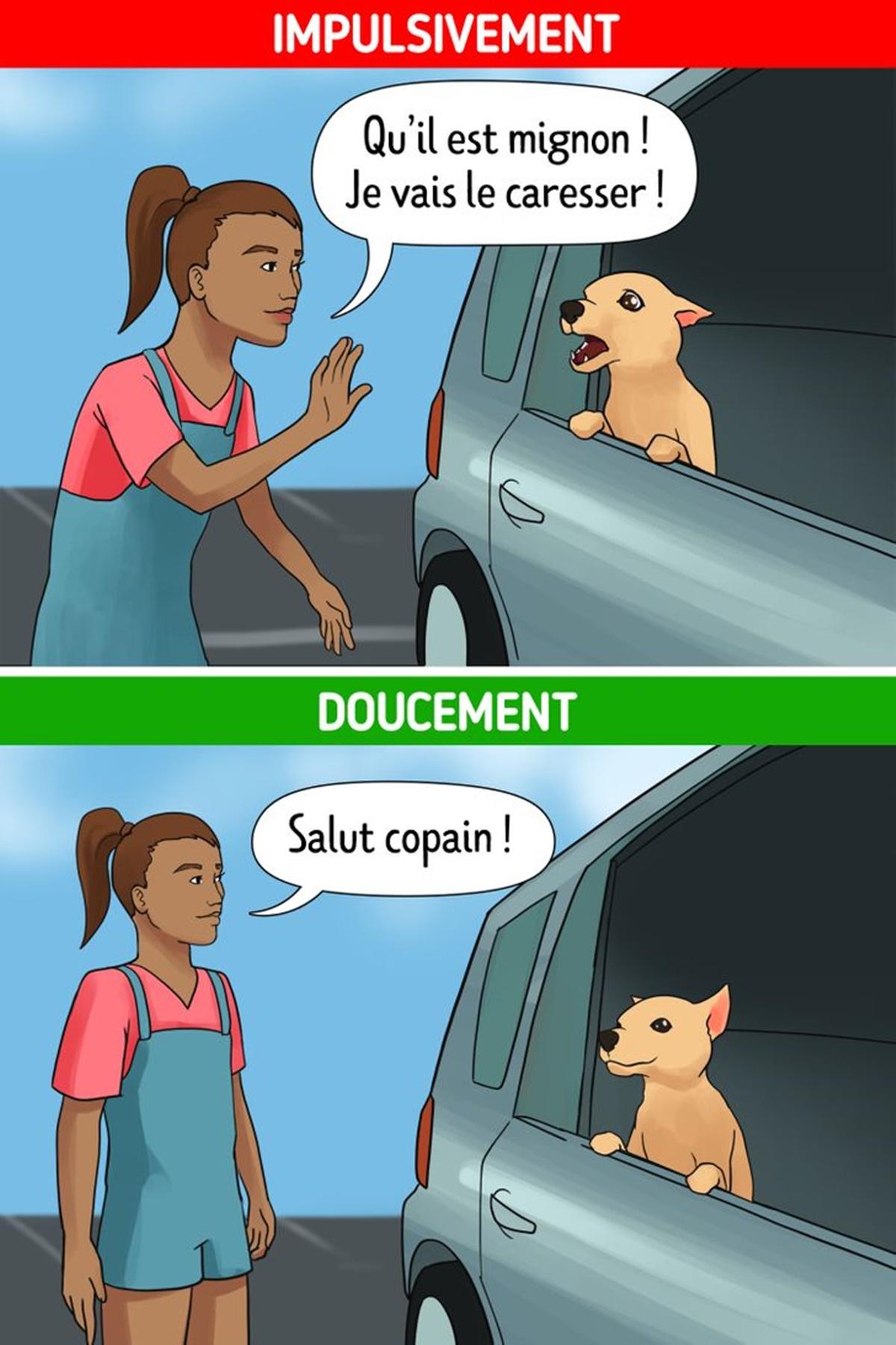 fretta cane