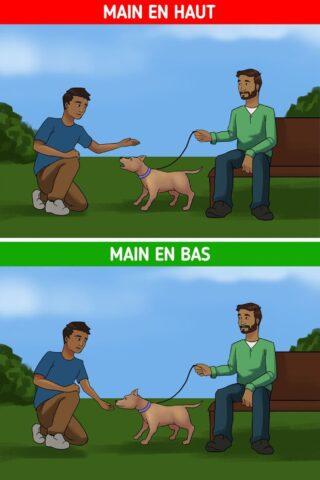 come avvicinare un cane