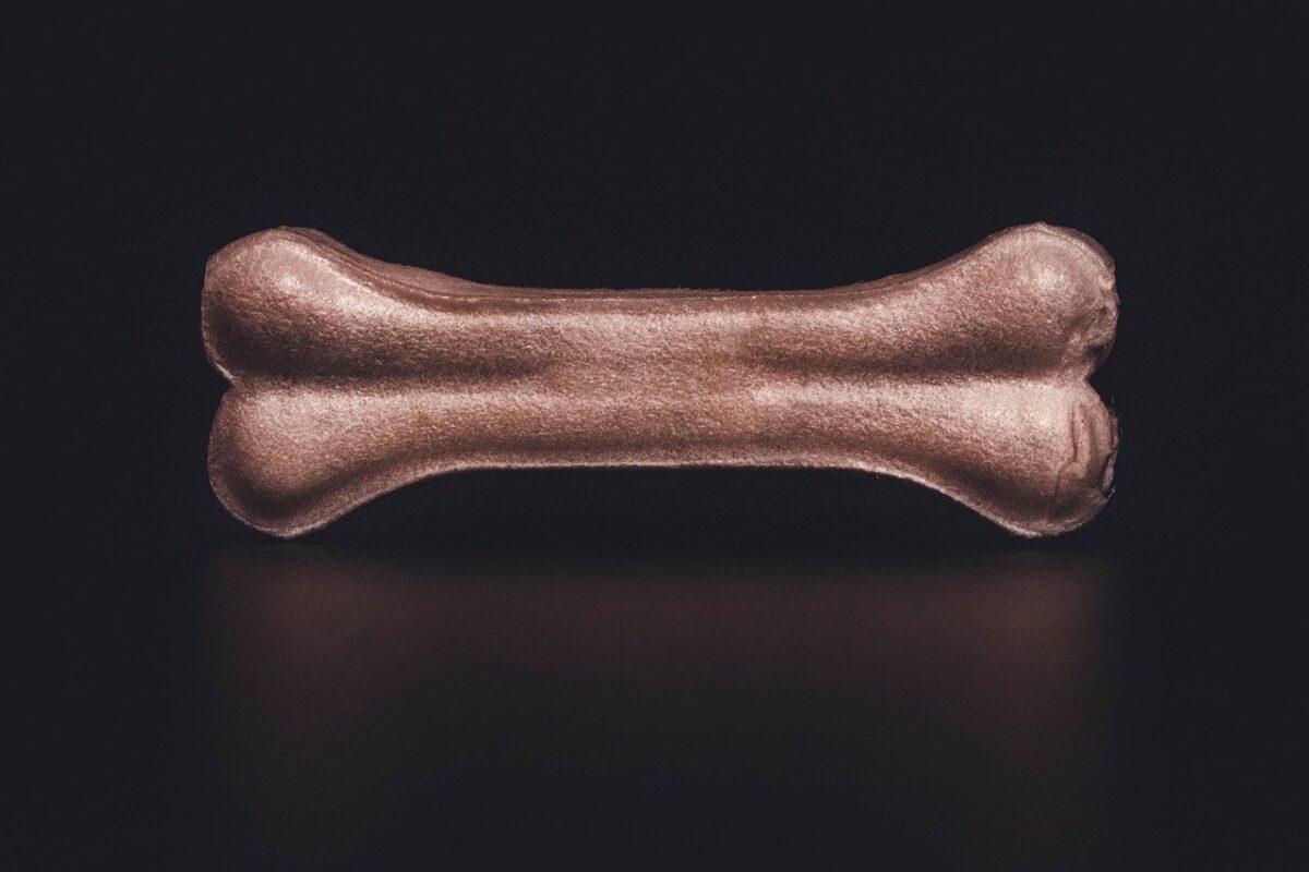 osso per il cane