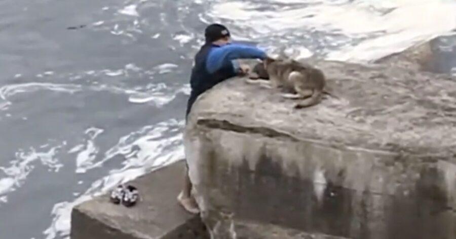 uomo salva cane nell'acqua