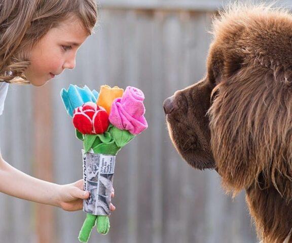 cane prende fiori