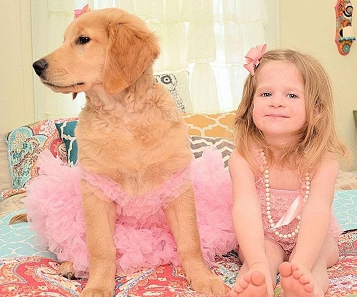 festa bambina cane
