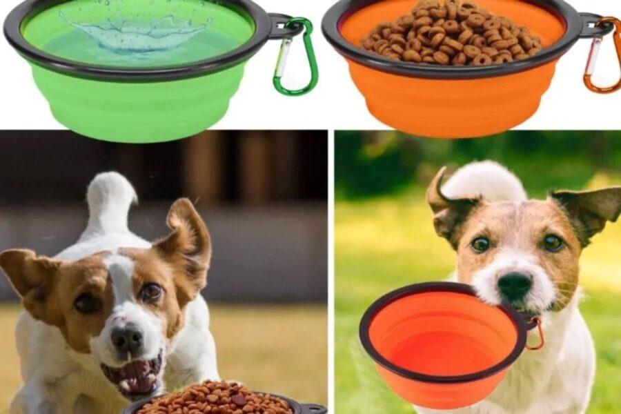ciotole per il cibo del cane