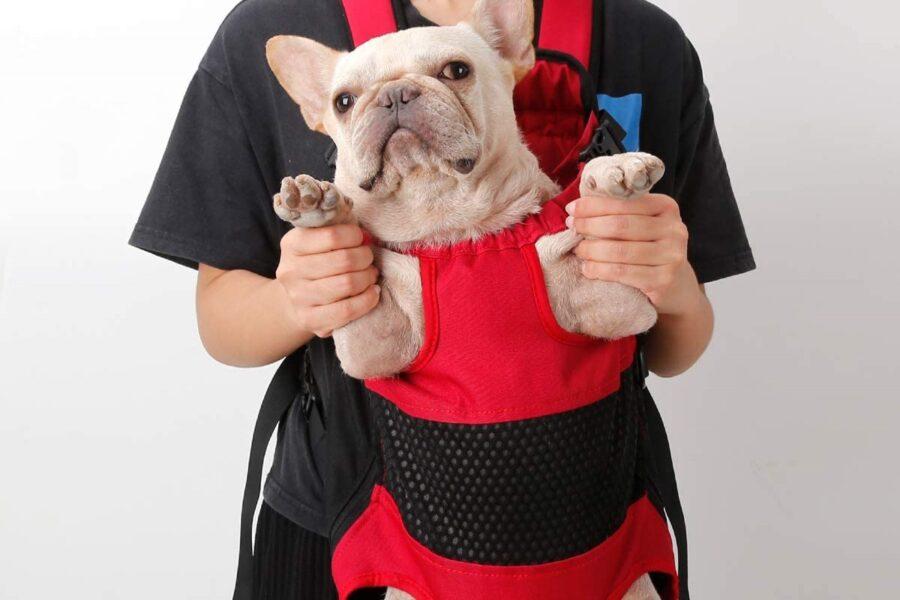 zaino trasportino per il cane