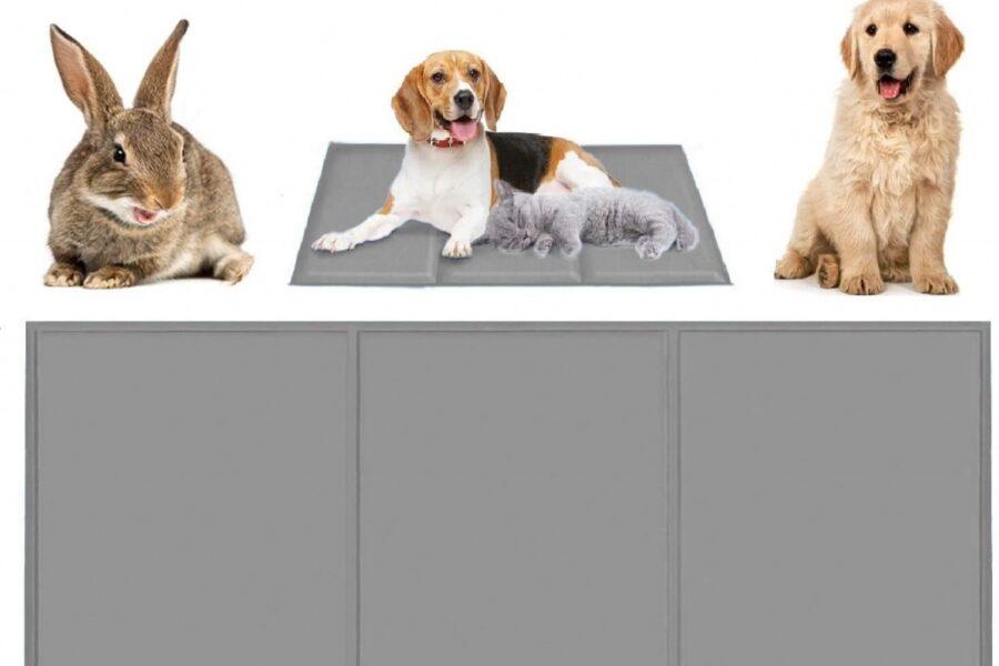 tappetino rinfrescante per il cane