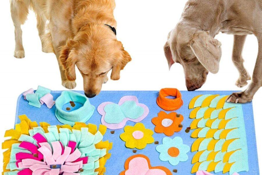 tappeto di giochi per cani