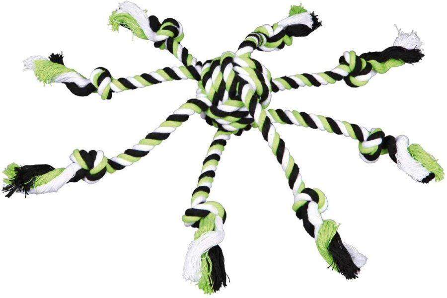 gioco di corda per il cane
