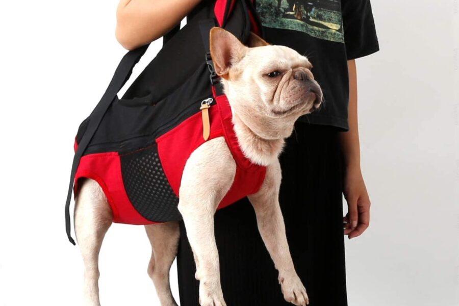 borsa per trasportare il cane