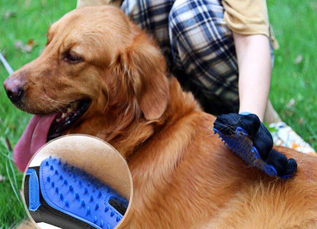 guanti per pelo cane