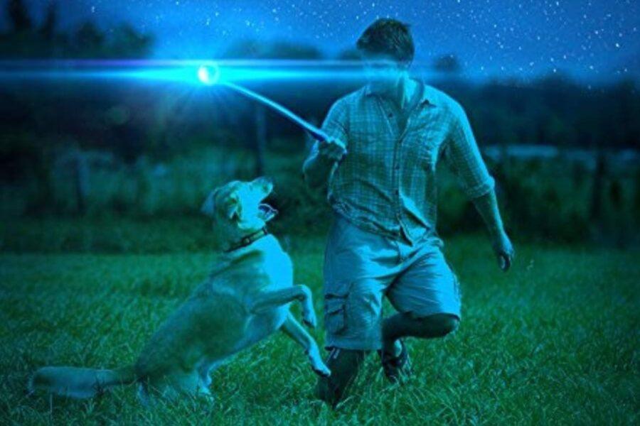 pallina luminosa per cani
