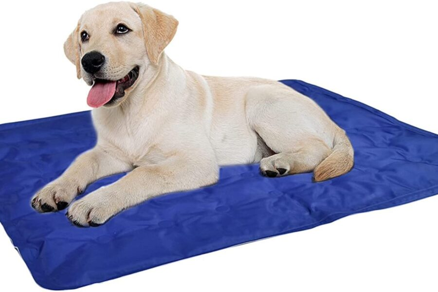 tappetino per tenere fresco il cane