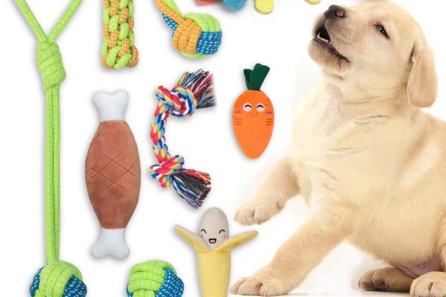 giocattoli per cuccioli di cane