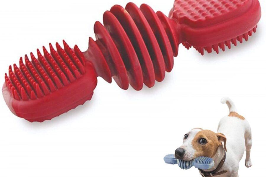 osso di gomma per cane