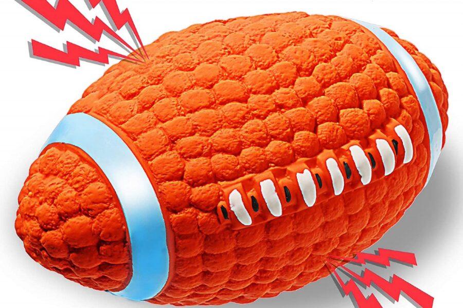 palla da rugby per cane