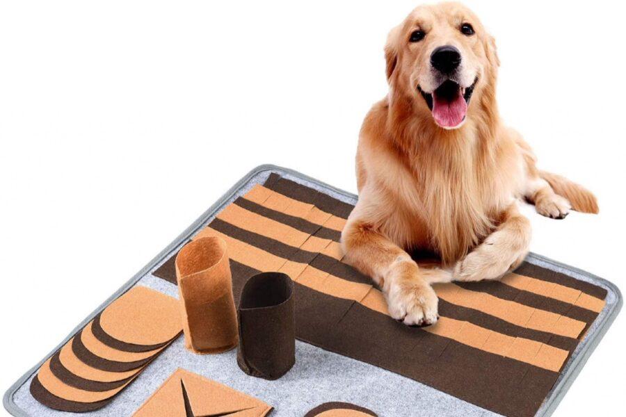 tappeto per far giocare il cane