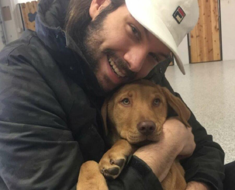 cane abbraccio per scusarsi