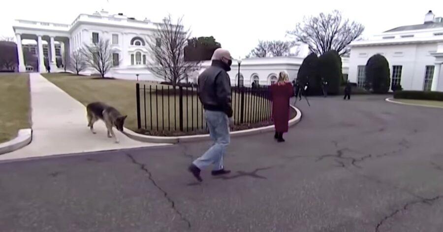 Biden con il suo Pastore Tedesco