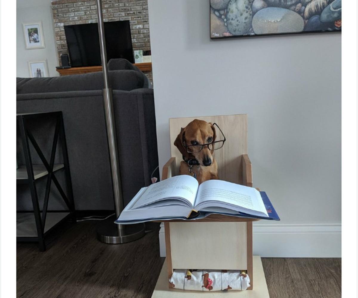 cane studio