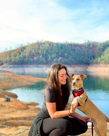 cane al lago sorride