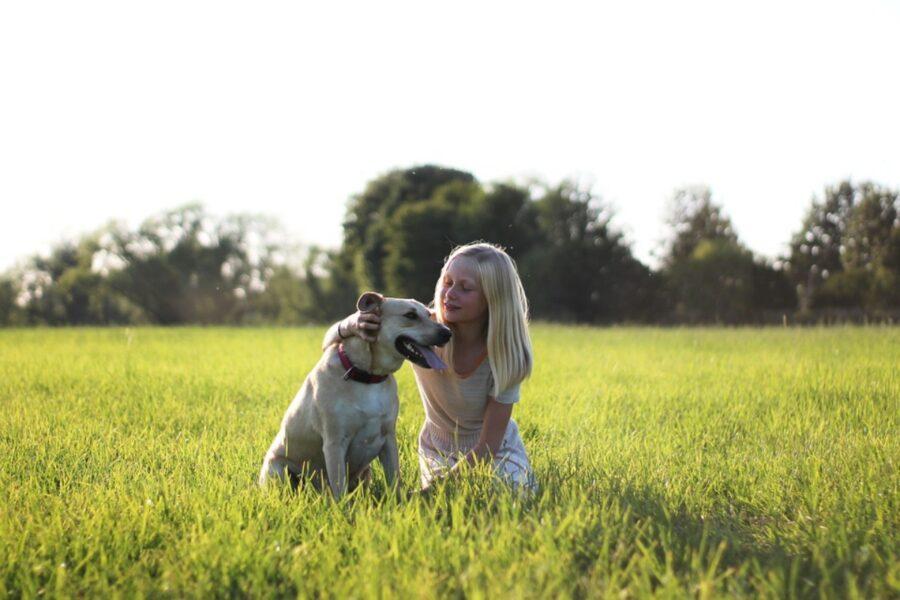 legame amicizia cane