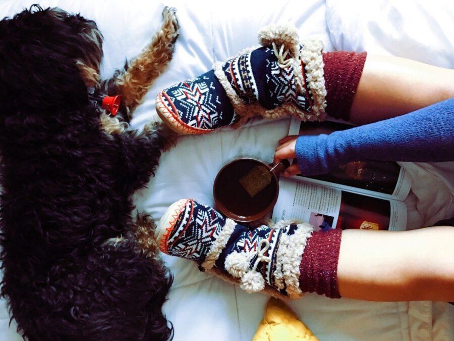 calzini mamma cane
