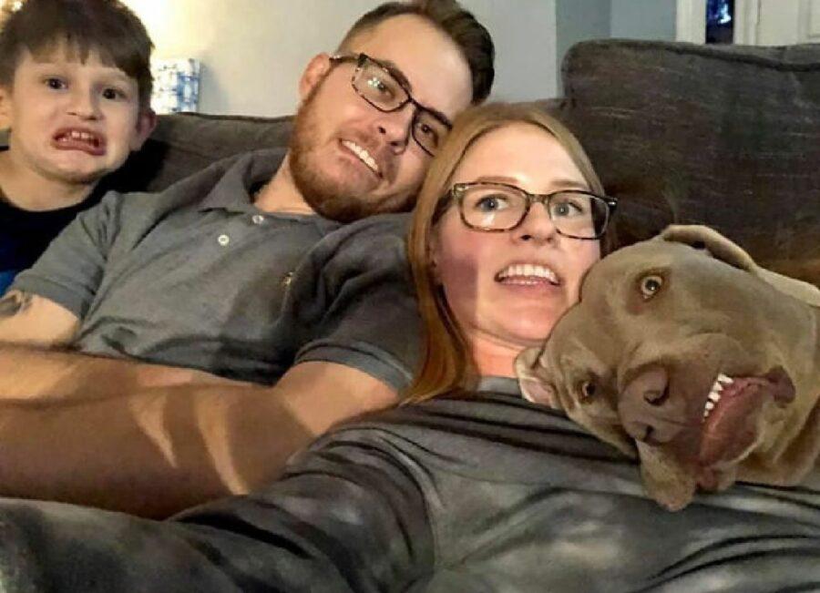 cane famiglia faccia strana