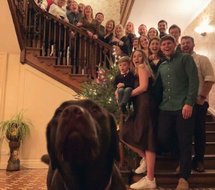 cane labrador famiglia grande