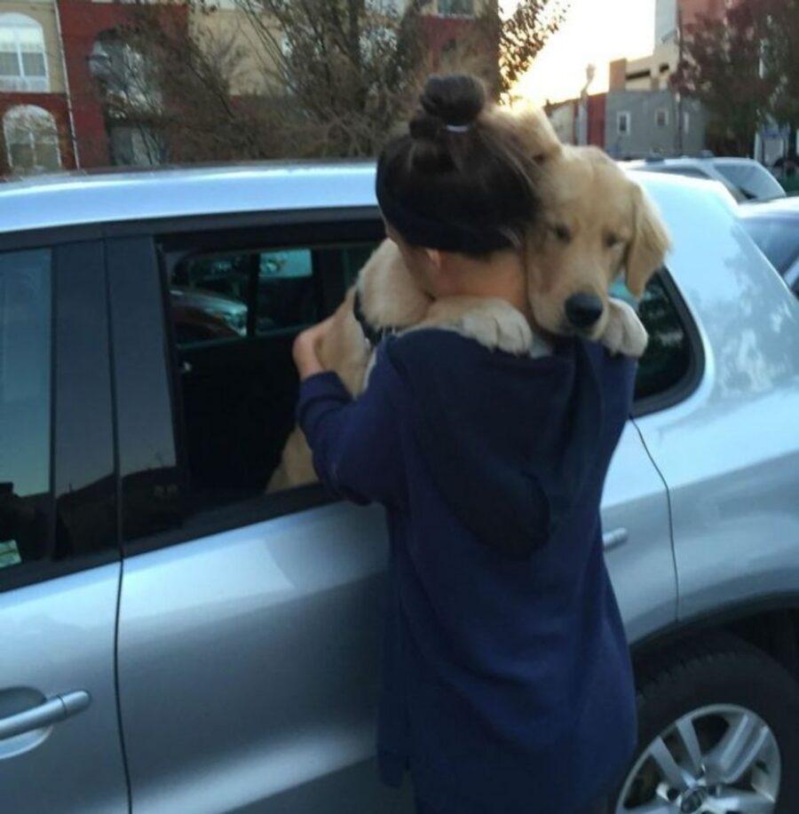 cucciolo auto abbraccio