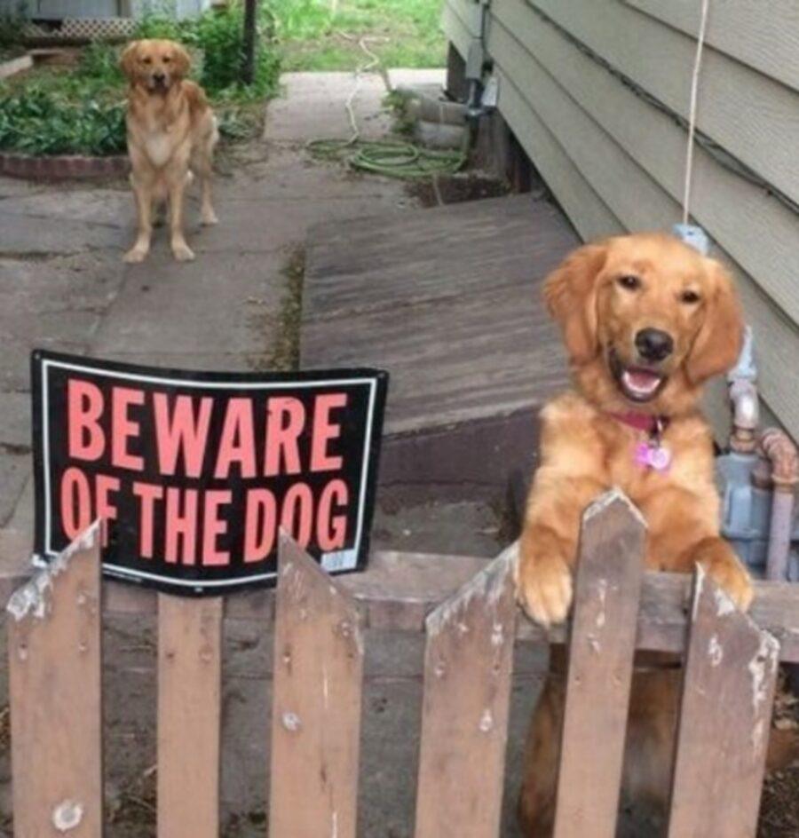 attenzione segnale cancello
