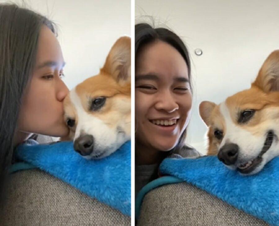 cagnolino bacio sulla guancia