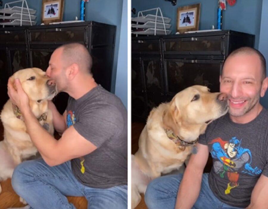 cane golden vuole più baci