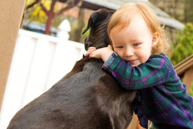 cucciolo abbraccio bimbo
