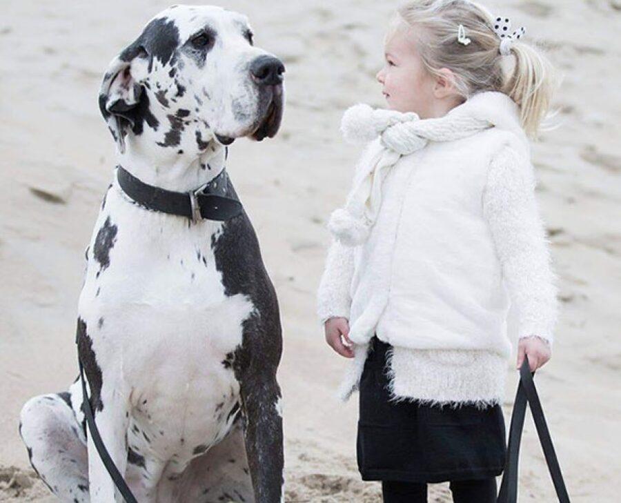 cucciolo bambina sulla spiaggia
