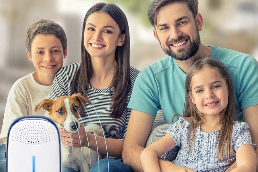 antiparassitario hitech per cani
