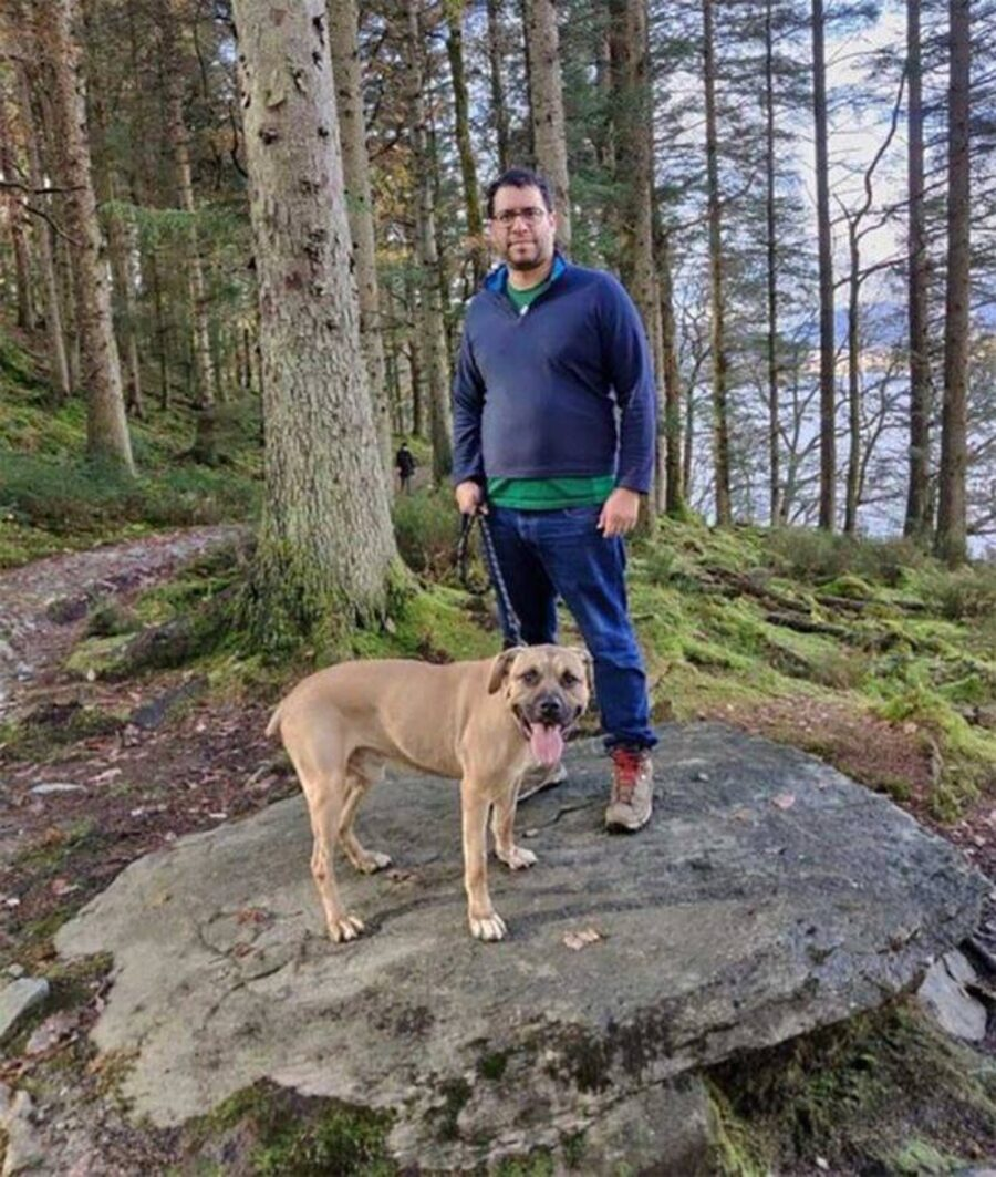 Cane bel bosco con proprietario