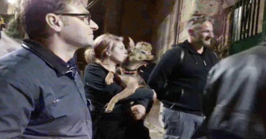 cane abbandonato per cinque gironi sul terrazzo