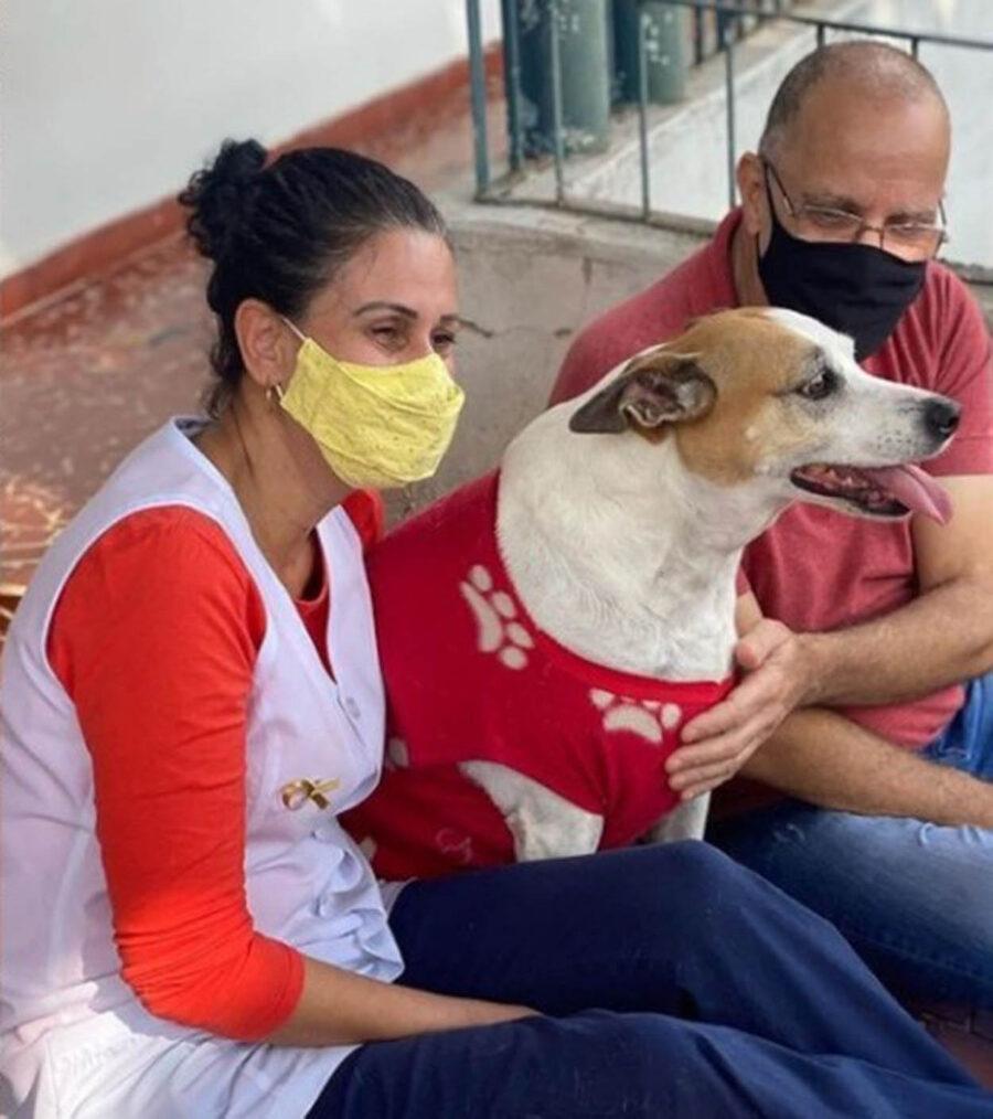 cane con due persone
